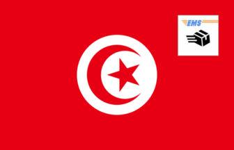 3分でわかる!EMSチュニジアへの送り方・書き方・料金!